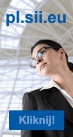 audyty informatyczne: http://pl.sii.eu/pl/oferta/dla-biznesu